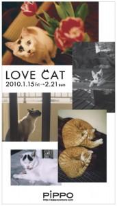 Lovecat_dm171x300_2